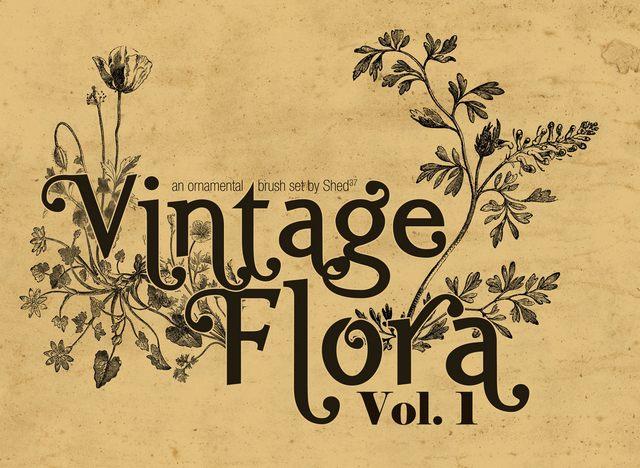 Vintage Flora Photoshop Brushes